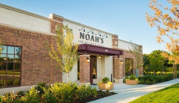 Noahs-Fort-Worth-TX-1